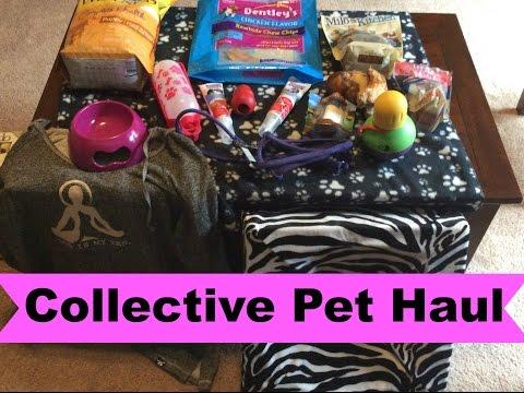 Collective Pet Haul