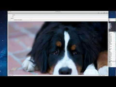 Tech Support: How to Resize Mail Attachment Images in Mac OSX