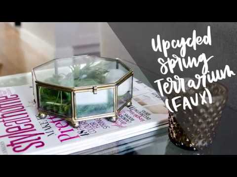 DIY Terrarium | Upcycled Glass Terrarium with Faux Air Plants & Moss | Spring $5 Goodwill Challenge