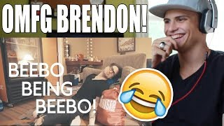 BEEBO BEING BEEBO! Brendon Urie REACTION