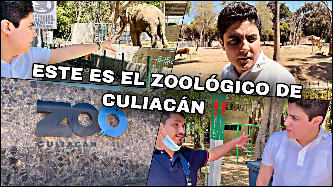 ASI SE ENCUENTRA EL ZOOLOGICO DE CULIACAN   MARKITOS TOYS