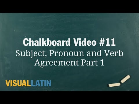 Subject, Pronoun and Verb Agreement Part 1 | Visual Latin Chalkboard #11
