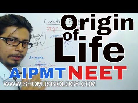 Origin of life class 12 biology | CBSE Biology for NEET exam