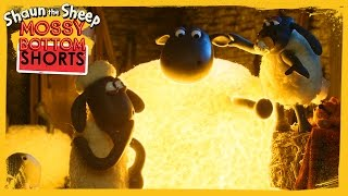 Lights Out - Shaun The Sheep [full Episode]