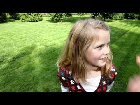 Twinklebelle's non slip hair clips