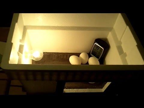 DIY $20 Egg Incubator - How To Make An Egg Incubator, CHEAP and EASY!!!