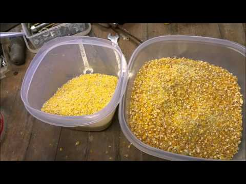 Grinding Corn Meal For Corn Bread