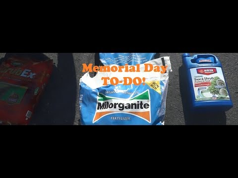 Scotts GrubEx + Organic Milorganite fertilizer for Memorial Day (LAWN CARE)