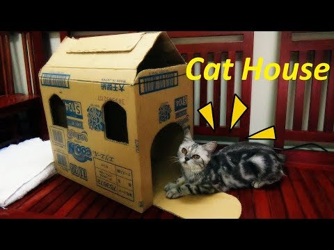 Transform a Simple Box into a Cat House | DIY Making of Pet House  | Meo Cover Home