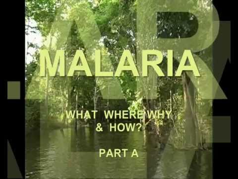 MALARIA - WHAT WHERE WHY & HOW.wmv