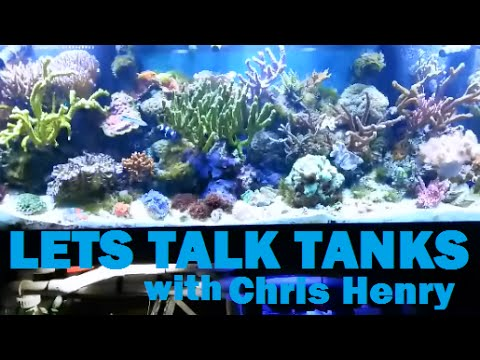 125 Gallon Reef Tank System Walk Through With Chris Henry (Lets Talk Tanks)