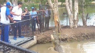 Moeen Ali & Alastair Cook Meet Bully The Crocodile In Australia