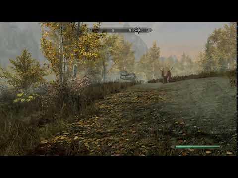 Skyrim - Cow chasing Chicken
