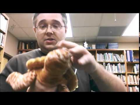 Kansas City Clowns: Adventures in Puppet Making - Stuffed Animals into Puppets Part 01