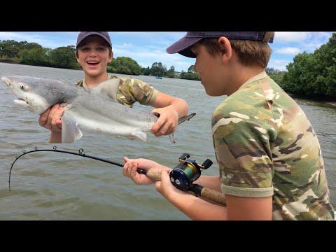 Shark Fishing Logan River - Stabbed By Worlds DEADLIEST Fish