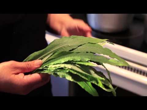 Fireweed Tea (Haas) :: Store Outside You Door :: Metlakatla