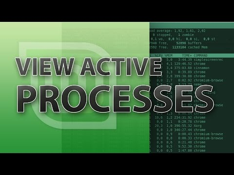 How to view all running processes in Linux Mint