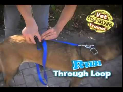 Instant Trainer Leash - Stop your dog from pulling