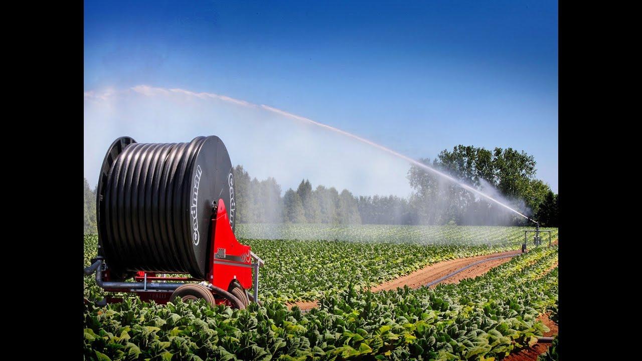 Cadman Irrigation Systems with Gun Cart