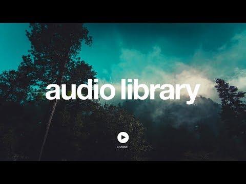 [No Copyright Music] Bongo - KV