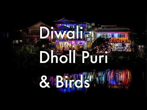Diwali, Dholl Puri & Birds