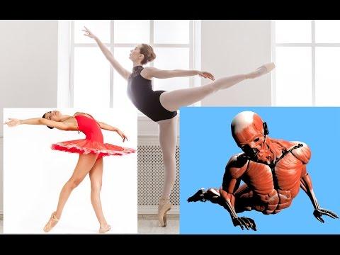 Arabesque Tutorial Stretching Flexibility Dance Ballet Stretches