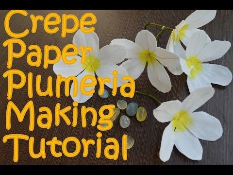 Crepe Paper Plumeria Flower Making  | Tutorial