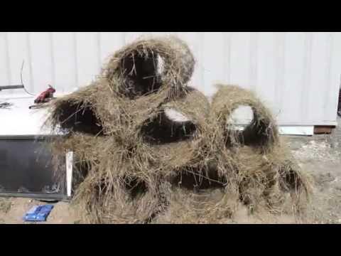 Building a Mallard Hen House