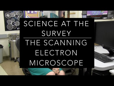 Science at the Survey: The Scanning Electron Microscope