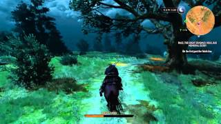 The Witcher 3: Wild Hunt - Fast & the Furious