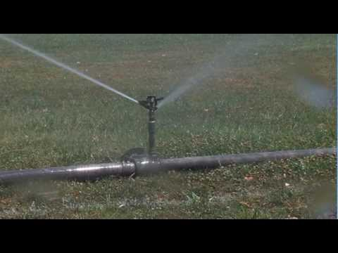 2012-07-17 News Watch Video - Keeping Grass Green
