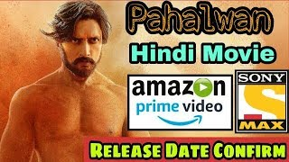 Pahalwan (Baadshah Pahalwan) Hindi Movie Tv Premiere Release Date Confirm