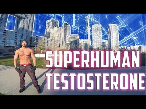 How To Increase Testosterone Naturally | SuperHuman Testosterone BluePrint For Alpha Males