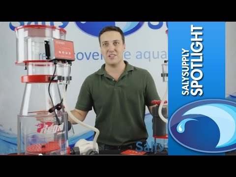 Product Spotlight - Reef Octopus Regal Protein Skimmers
