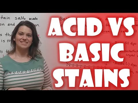 Acidic vs. Basic Stains in Microbiology