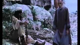 صقر قريش JAMAL SOLIMAN
