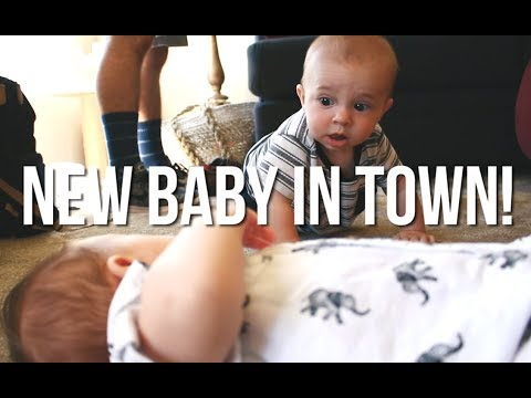 New Baby In Town