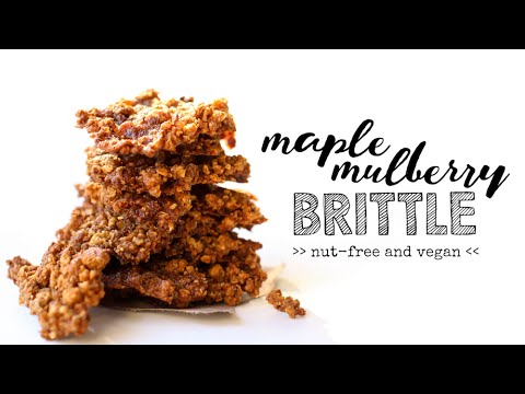 Maple Mulberry Brittle // nut-free, fat-free, vegan