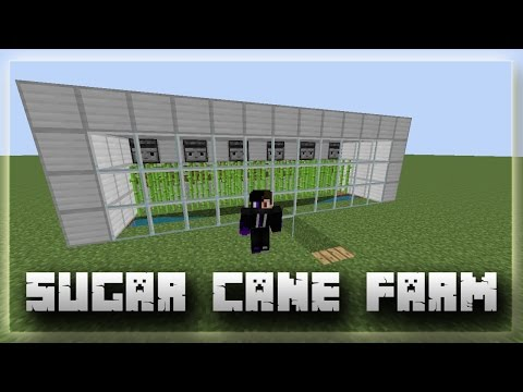 Minecraft 1.11+ | LossLess Automatic Sugar Cane Farm !