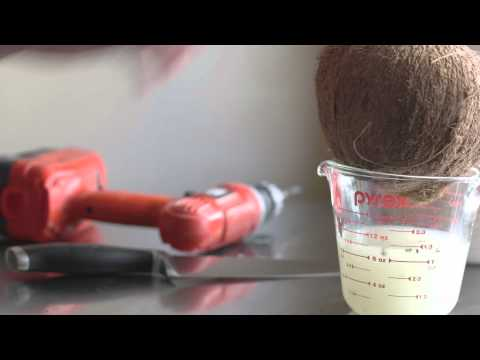 How to Open a Coconut (EASY!)