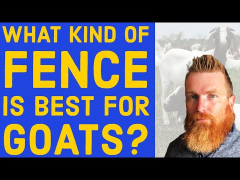 What Kind of Fence is Best for Goats - G Farm 17