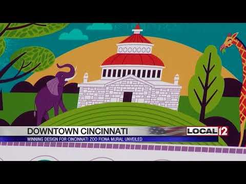New mural downtown will feature Cincinnati Zoo's Fiona