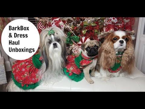 BARK BOX AND DRESS HAUL Unboxings- Nov 2017