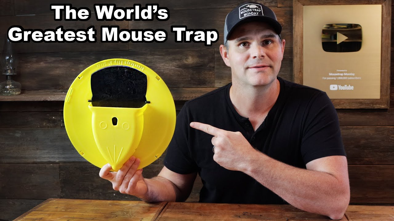 I Discovered The Greatest Mouse Trap Ever Invented! Amazing New Design. Mousetrap Monday