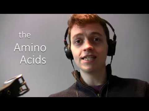 The Amino Acids Song