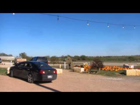 Dancing Bee Winery -- Rogers, Texas
