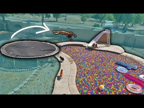 INSANE TRAMPOLINE FLIPS INTO BALL PIT FILLED POOL!!! w/ FUNK BROS