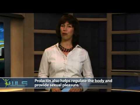 High Prolactin May Lower Metabolism