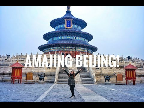 Temple of Heaven, Forbidden City & The oldest cat of China | From Beijing to Xi'An Part 2