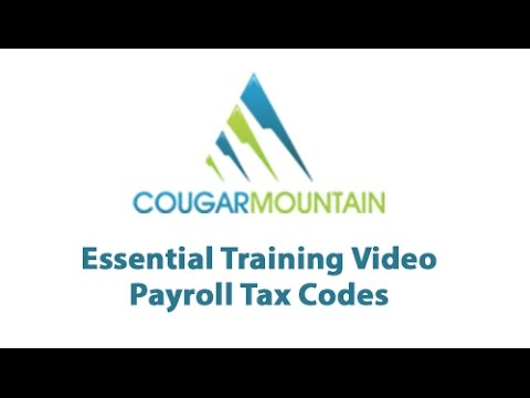 Payroll Tax Codes